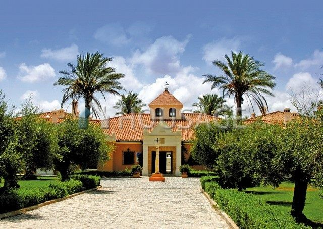 Недвижимость в испании спецпредложения