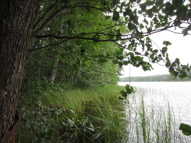 Земля в Наараярви, Финляндия, 5000 м2 - фото 7