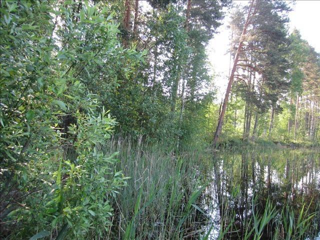 Земля в Наараярви, Финляндия, 2966 м2 - фото 1