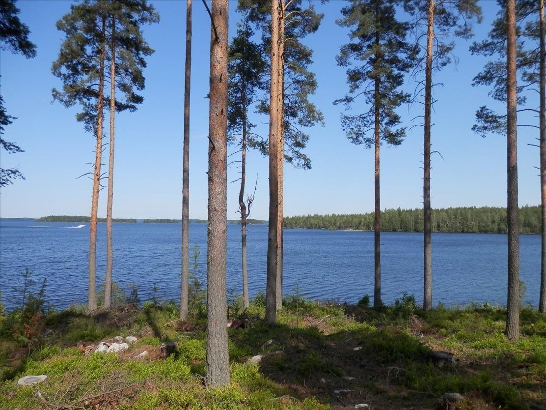 Земля в Рантасалми, Финляндия, 5000 м2 - фото 1