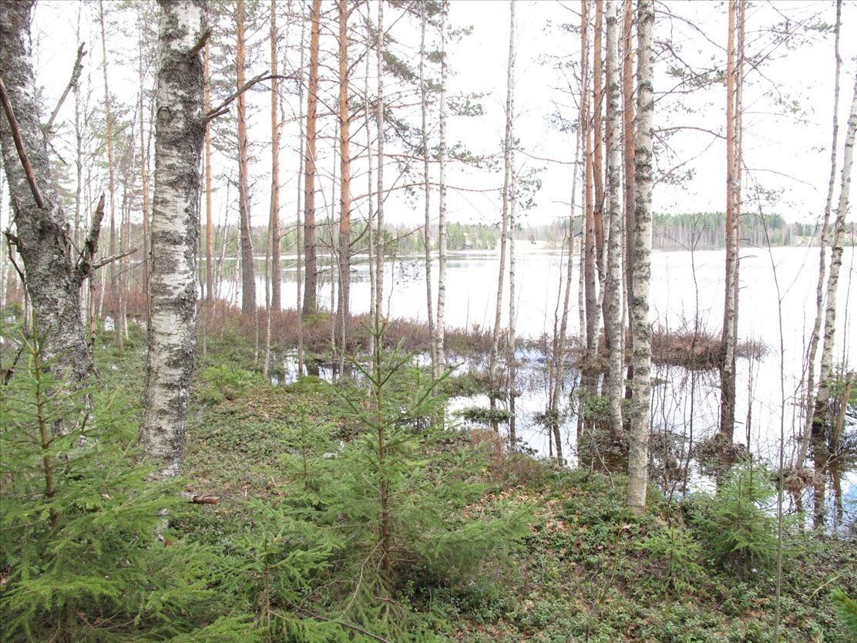 Земля в Юва, Финляндия, 7778 м2 - фото 1