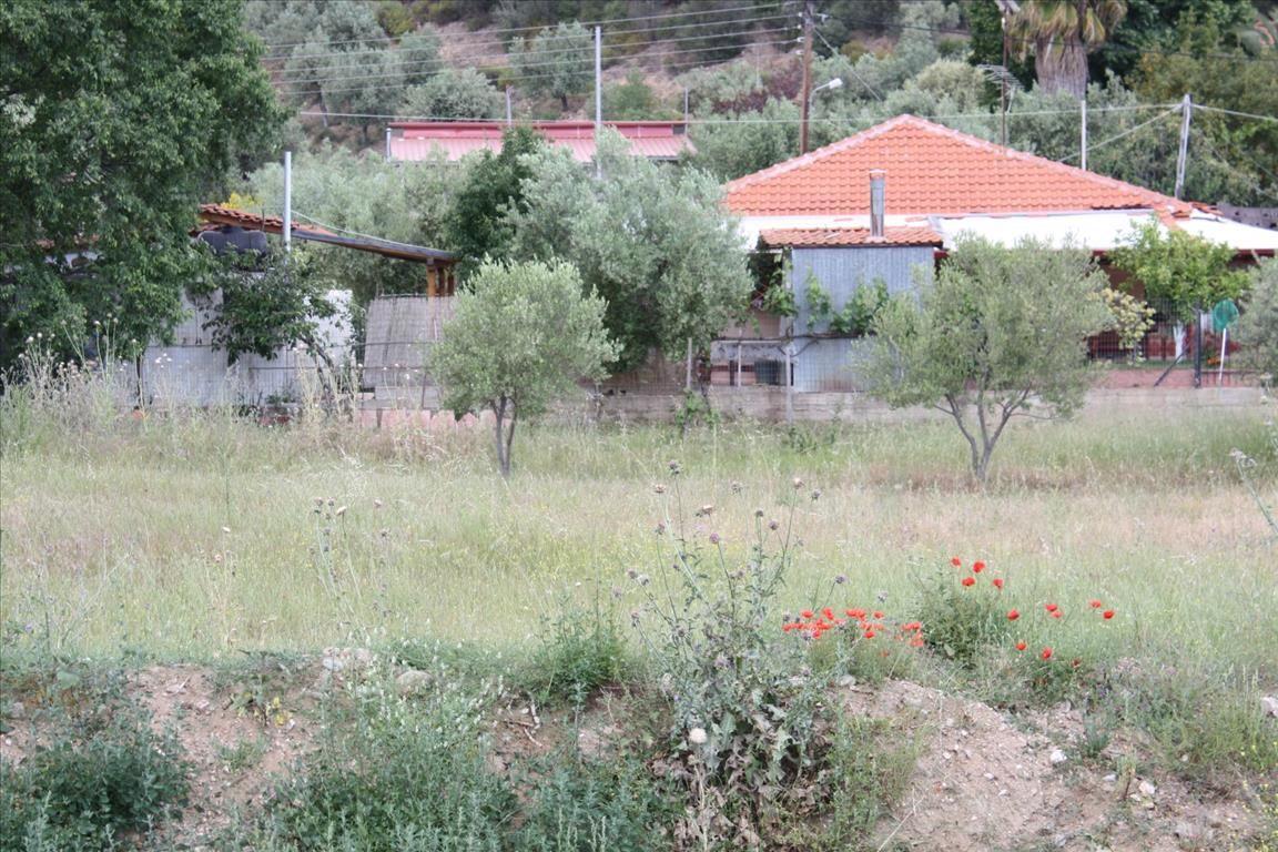 Земля в Ситонии, Греция, 1460 м2 - фото 1