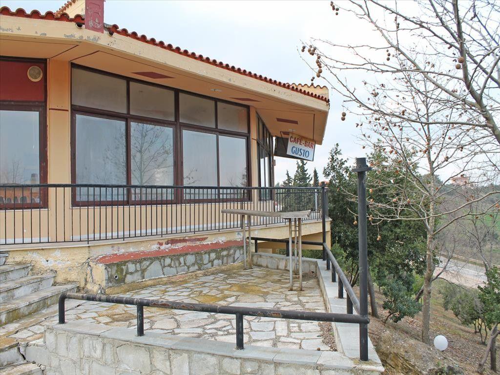 Коммерческая недвижимость Халкидики-Кассандра, Греция, 270 м2 - фото 1