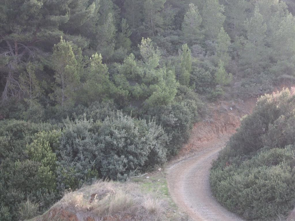 Таунхаус Халкидики-Кассандра, Греция, 295 м2 - фото 1