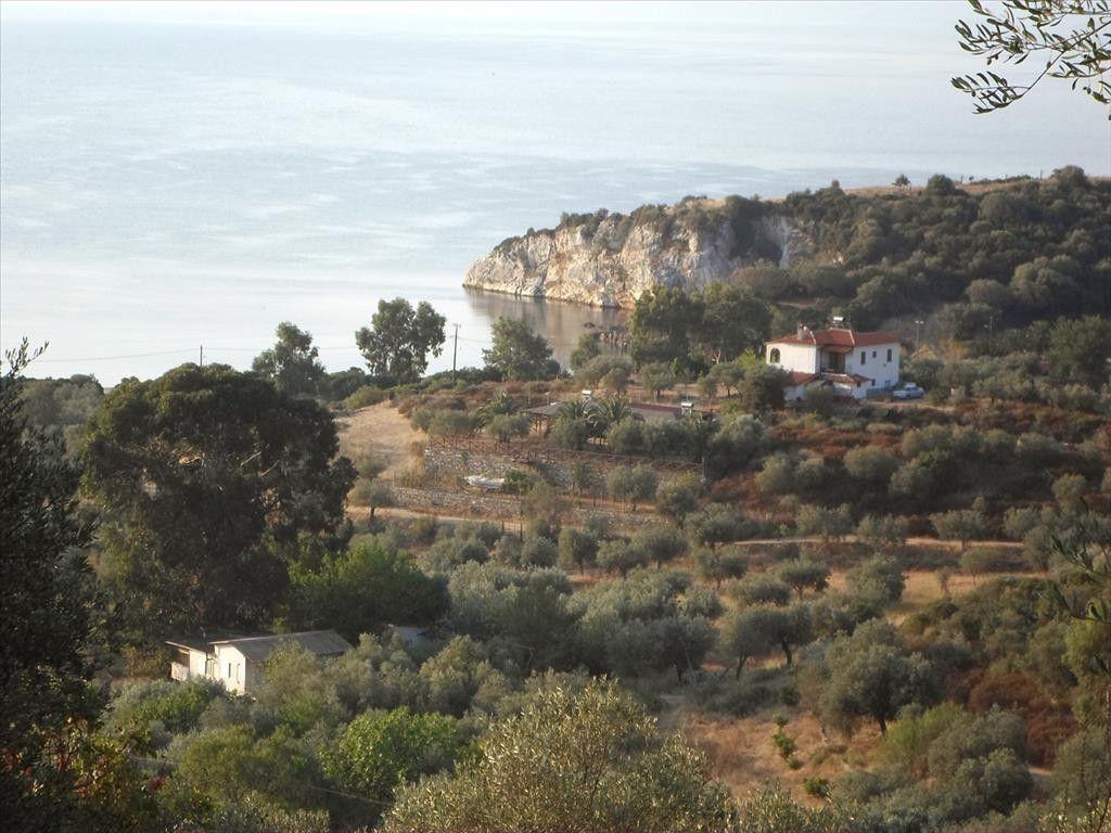 Земля Халкидики-Афон, Греция, 3151 м2 - фото 1