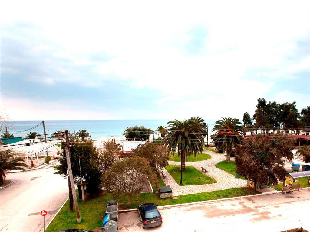Коммерческая недвижимость Халкидики-Другое, Греция, 600 м2 - фото 1