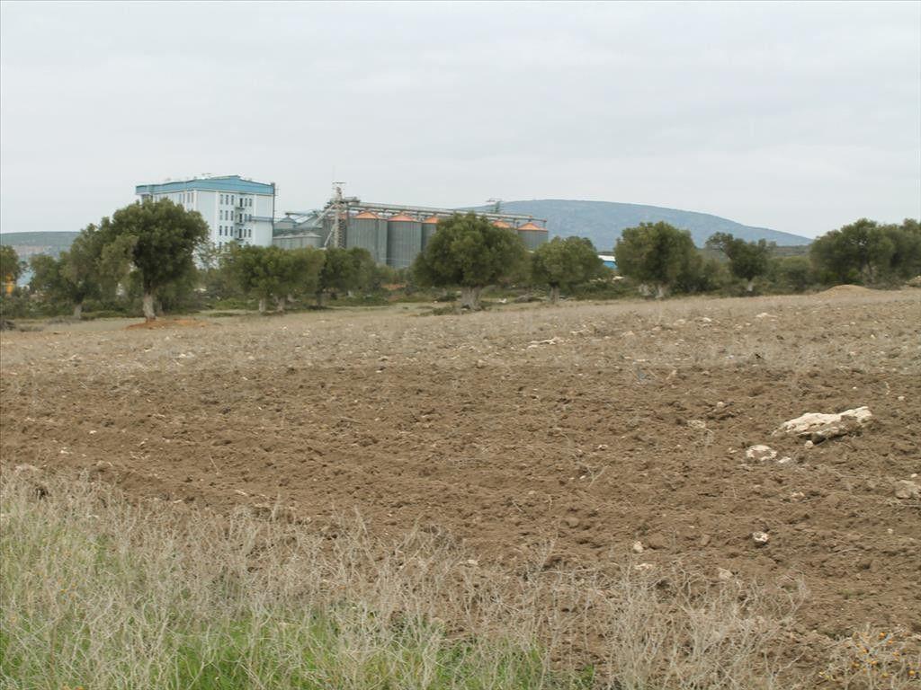 Земля Халкидики-Кассандра, Греция, 12694 сот. - фото 1