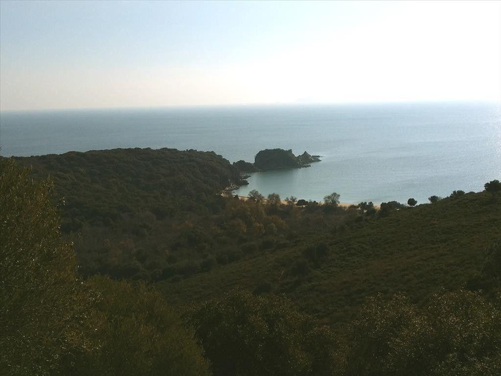 Земля Халкидики-Афон, Греция, 40813 сот. - фото 1