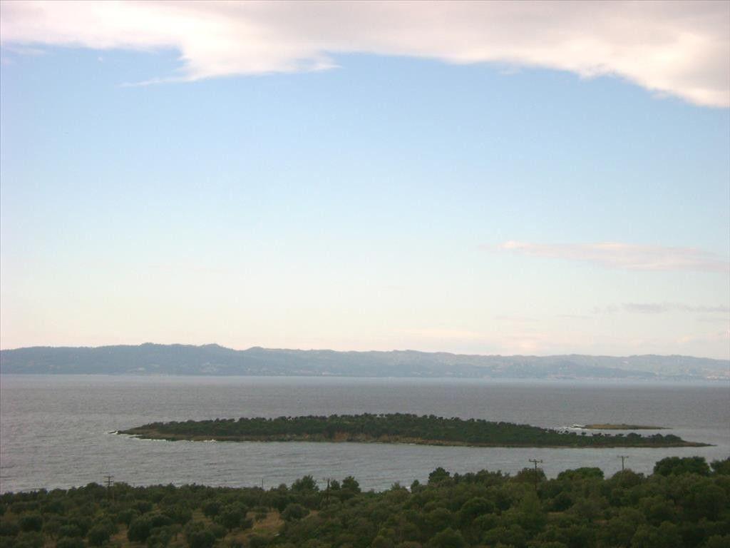 Земля Халкидики-Ситония, Греция, 16728 сот. - фото 1