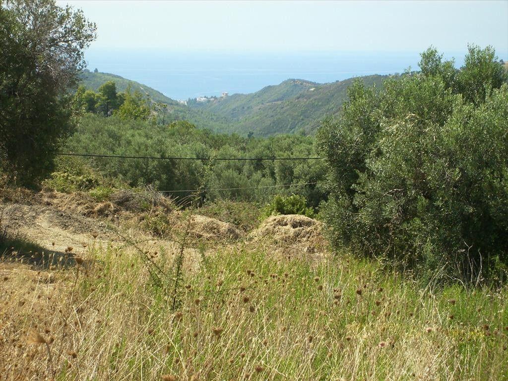 Земля Халкидики-Кассандра, Греция, 1033 сот. - фото 1