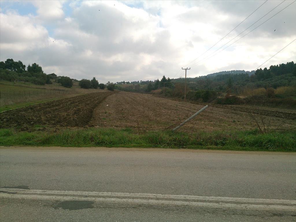 Земля Халкидики-Кассандра, Греция, 12150 сот. - фото 1