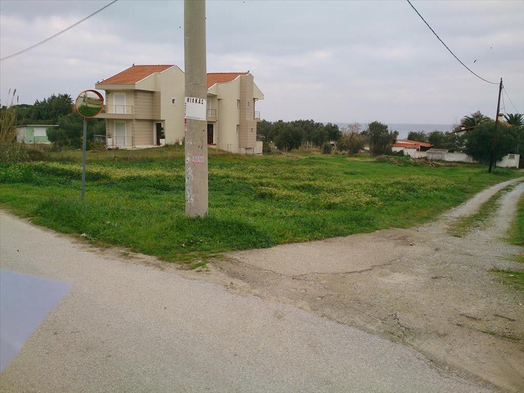 Земля Халкидики-Кассандра, Греция, 1300 сот. - фото 1