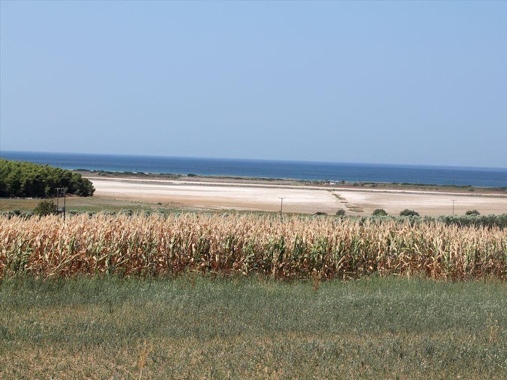 Земля Халкидики-Кассандра, Греция, 36000 сот. - фото 1