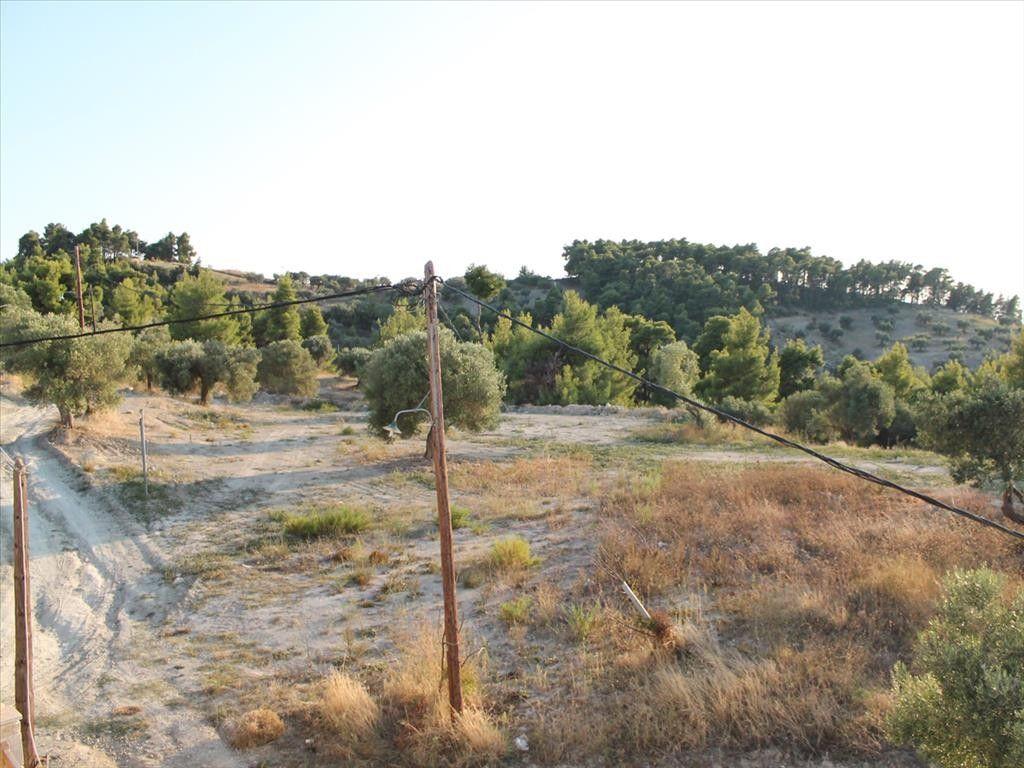 Земля Халкидики-Кассандра, Греция, 60000 сот. - фото 1