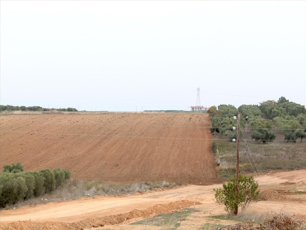 Земля Халкидики-Кассандра, Греция, 6200 сот. - фото 1