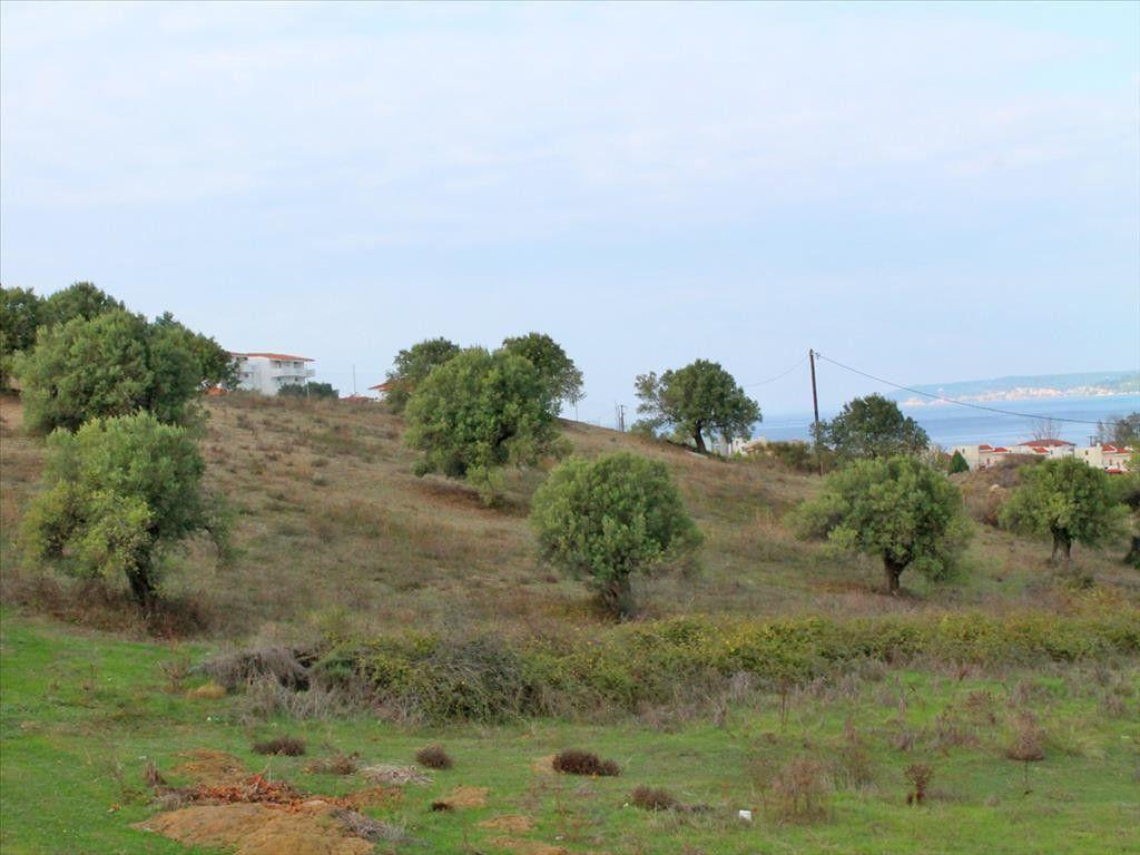 Земля Халкидики-Кассандра, Греция, 6300 сот. - фото 1