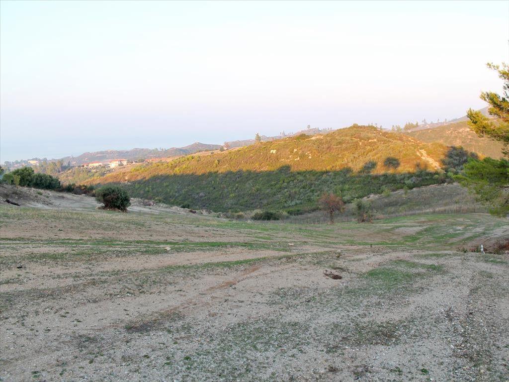 Земля Халкидики-Кассандра, Греция, 9239 сот. - фото 1