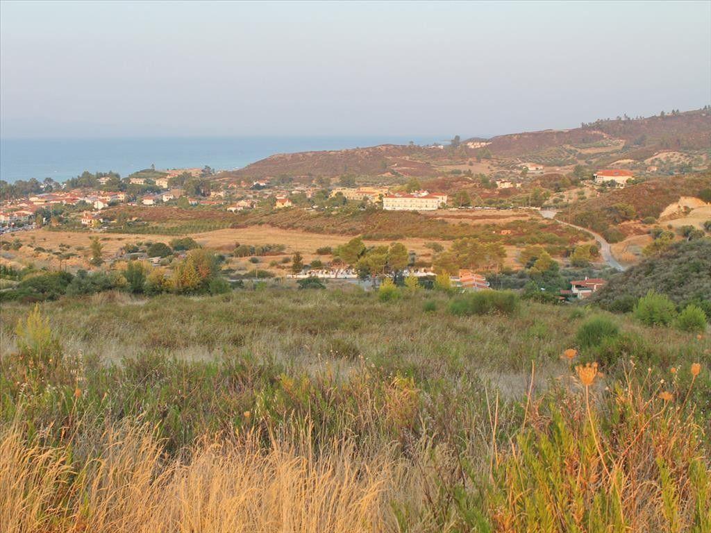 Земля Халкидики-Кассандра, Греция, 20500 сот. - фото 1