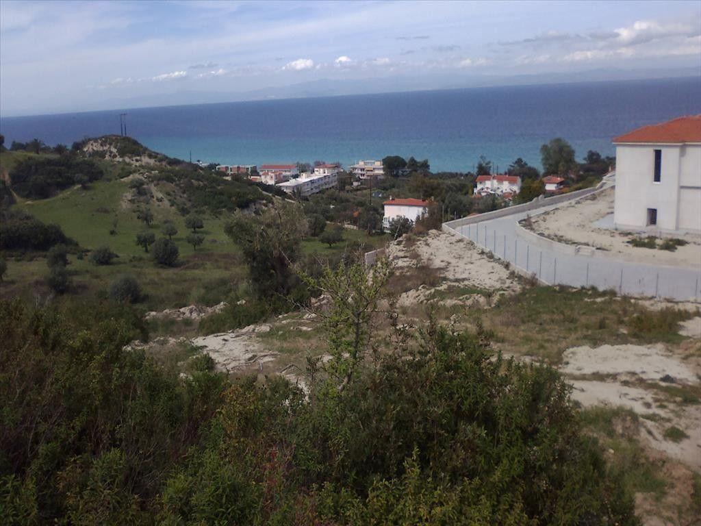 Земля Халкидики-Кассандра, Греция, 5298 сот. - фото 1