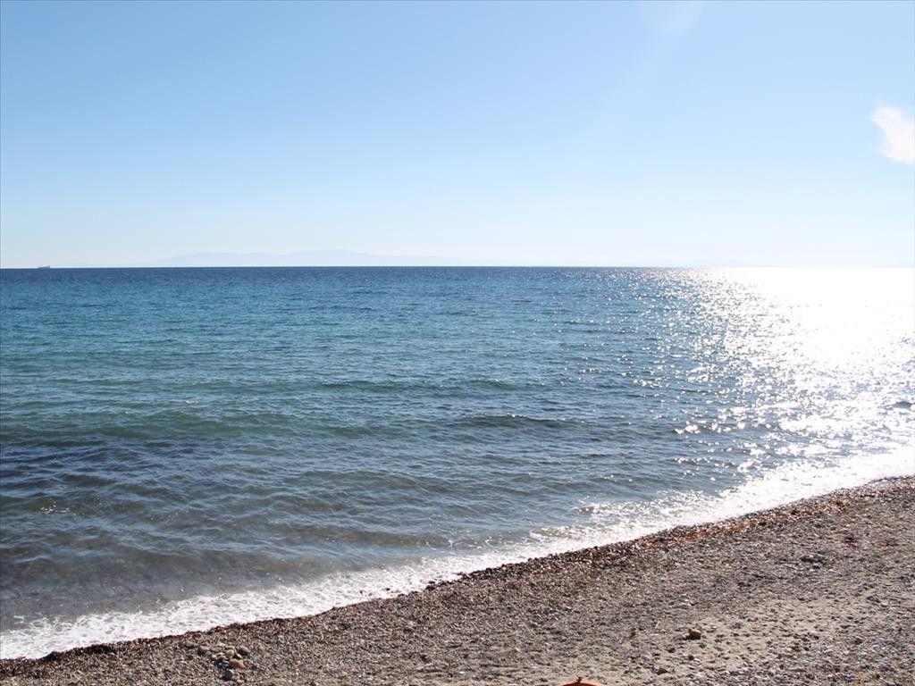 Земля Халкидики-Кассандра, Греция, 7500 сот. - фото 1