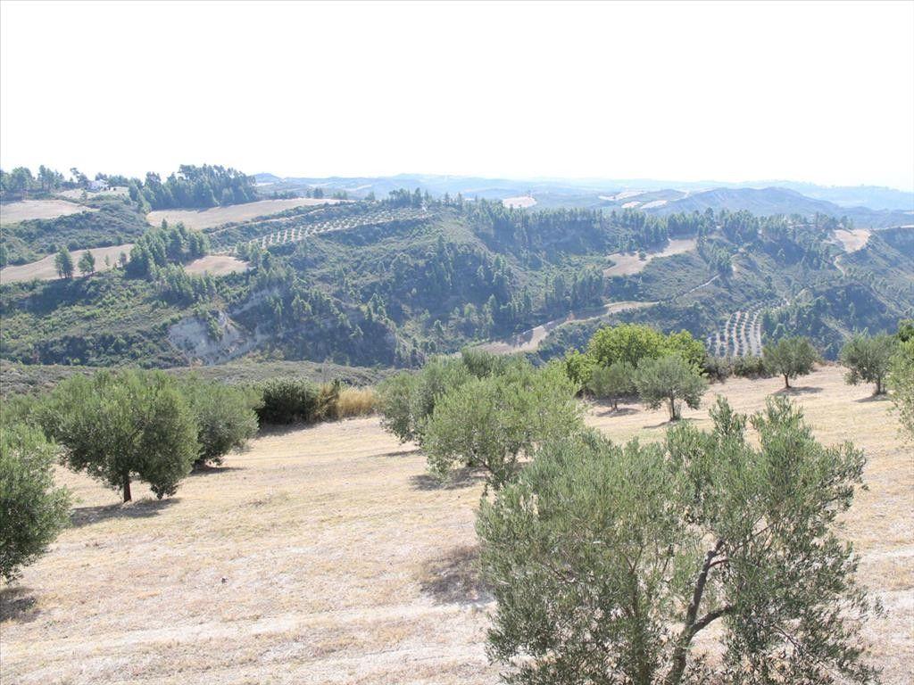 Земля Халкидики-Кассандра, Греция, 10180 сот. - фото 1