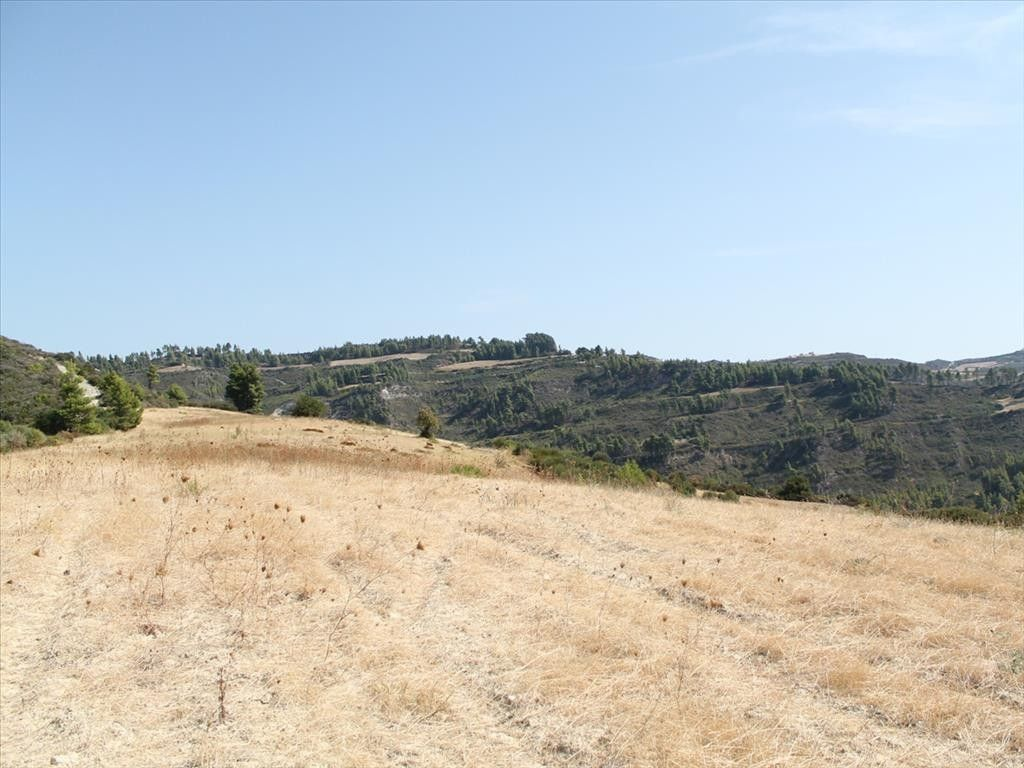 Земля Халкидики-Кассандра, Греция, 51000 сот. - фото 1