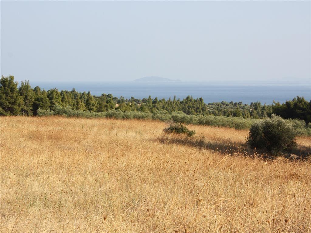 Земля Халкидики-Ситония, Греция, 17000 сот. - фото 1