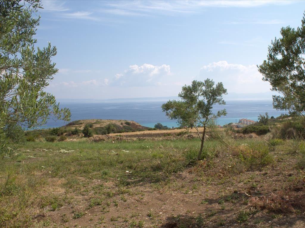 Земля Халкидики-Кассандра, Греция, 5060 сот. - фото 1