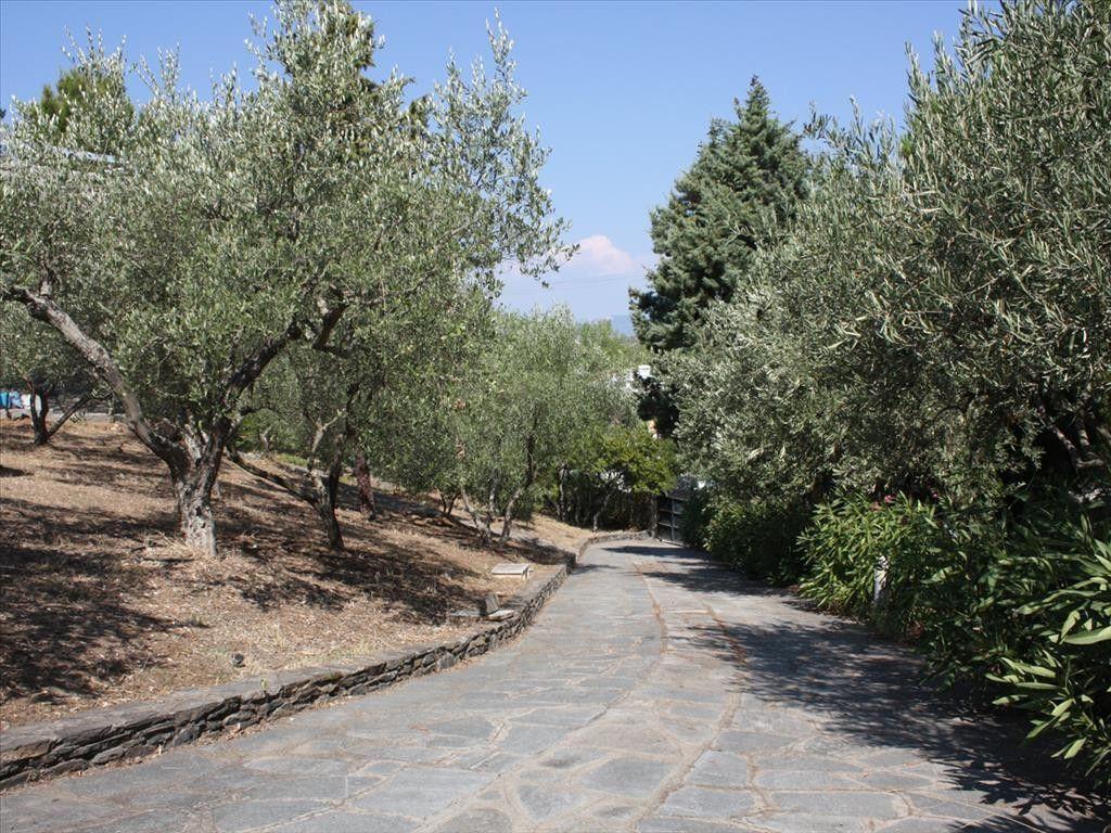 Вилла Халкидики-Ситония, Греция, 3000 сот. - фото 1