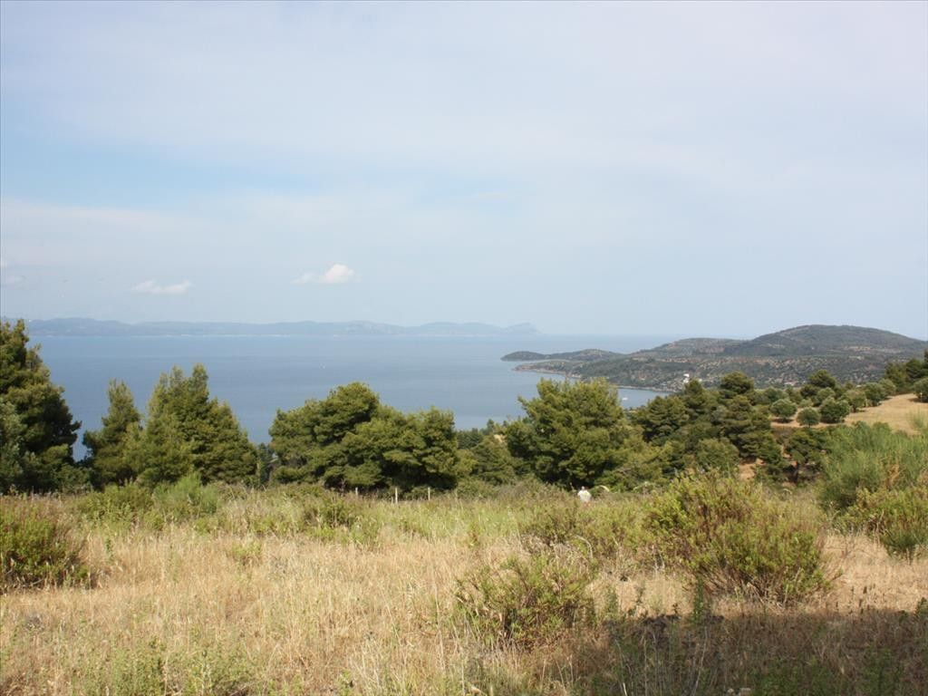 Земля Халкидики-Кассандра, Греция, 4600 сот. - фото 1
