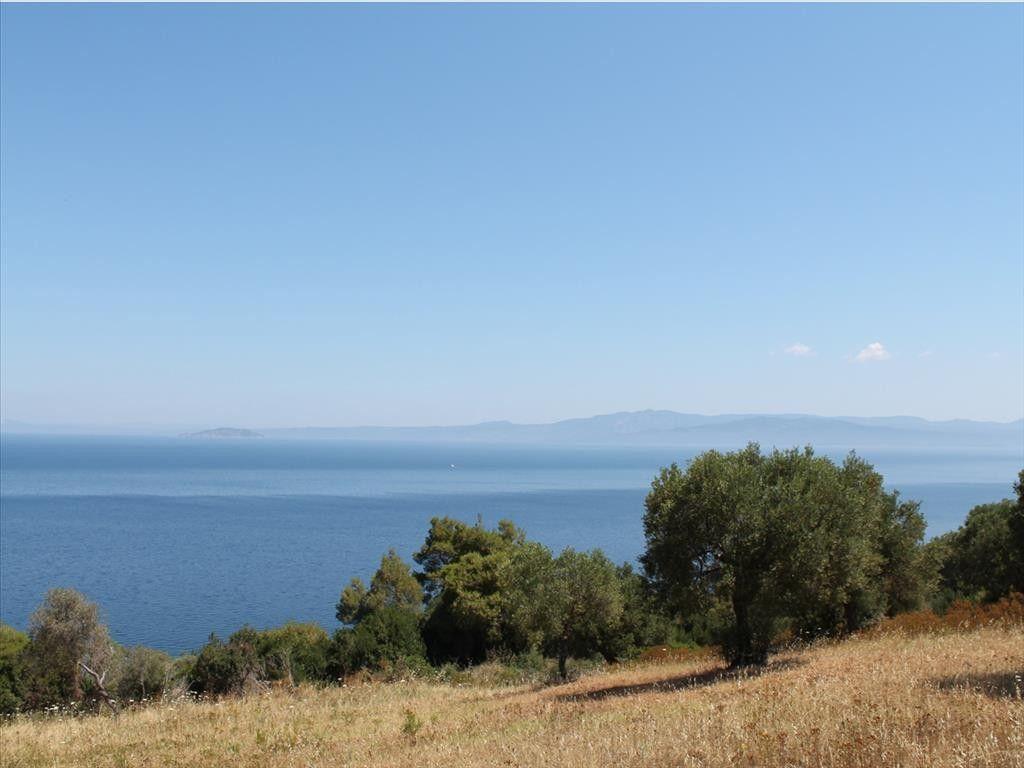 Земля Халкидики-Кассандра, Греция, 26800 м2 - фото 1