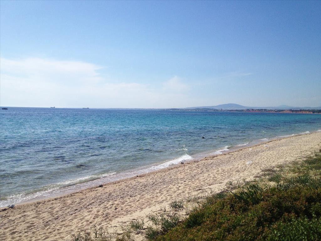 Земля Халкидики-Кассандра, Греция, 4505 сот. - фото 1