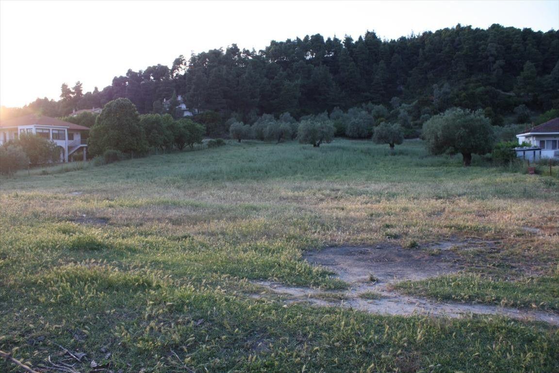 Земля Халкидики-Кассандра, Греция, 3770 сот. - фото 1