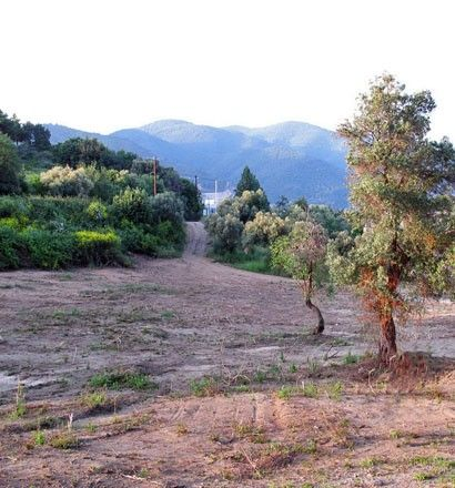 Земля Халкидики-Афон, Греция, 3524 м2 - фото 1
