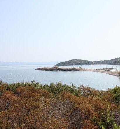 Земля Халкидики-Кассандра, Греция, 4000 м2 - фото 1