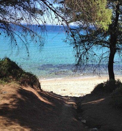 Земля Халкидики-Кассандра, Греция, 12000 м2 - фото 1
