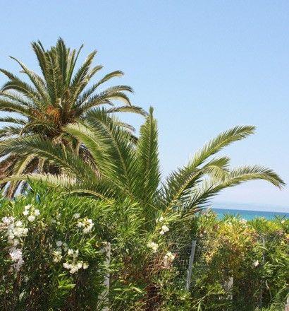 Квартира Халкидики-Кассандра, Греция, 55 м2 - фото 1