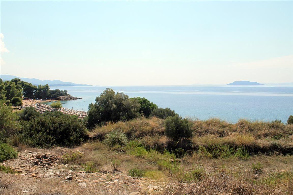 Земля Халкидики-Ситония, Греция, 6310 сот. - фото 1