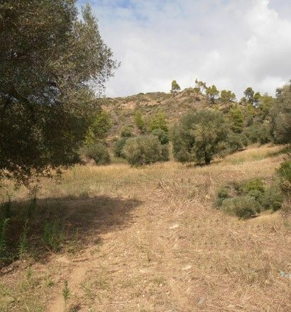 Земля Халкидики-Кассандра, Греция, 19000 сот. - фото 1