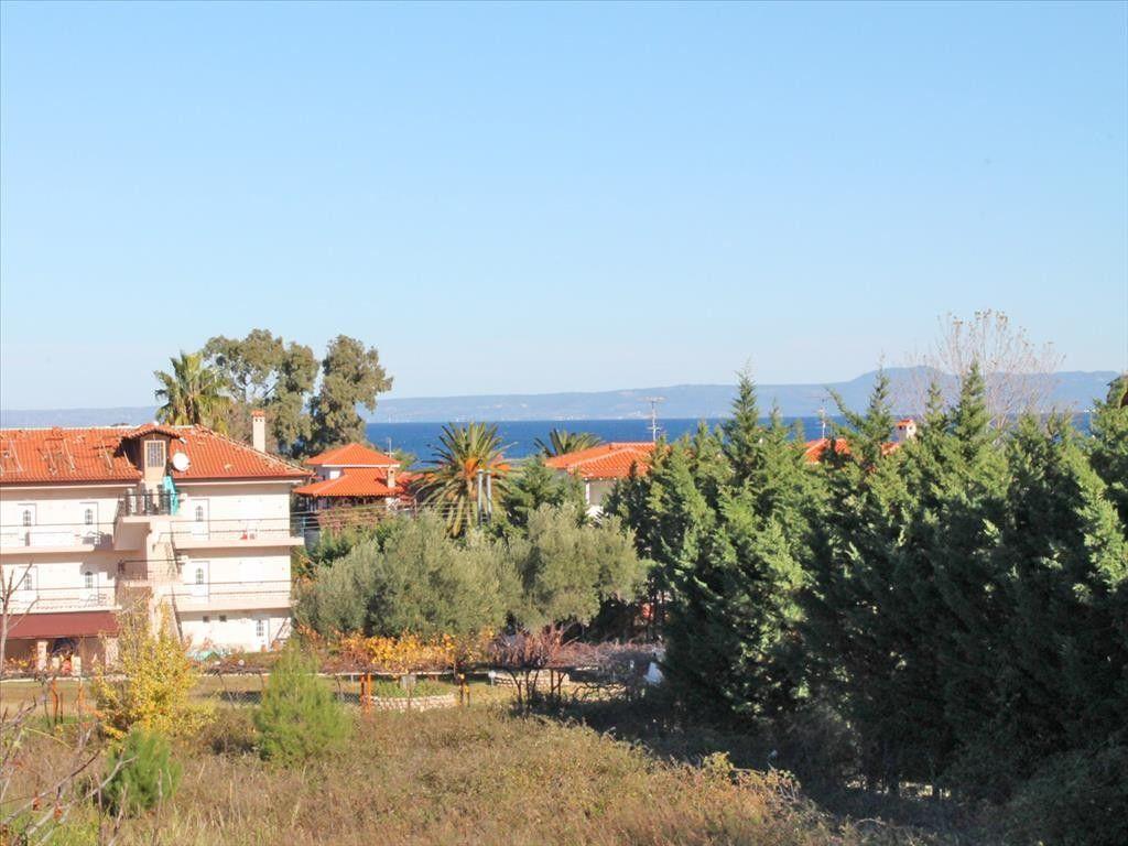 Земля Халкидики-Кассандра, Греция, 1330 сот. - фото 1