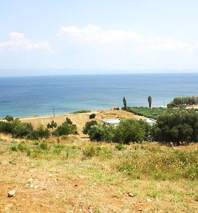 Земля Халкидики-Кассандра, Греция, 17000 м2 - фото 1