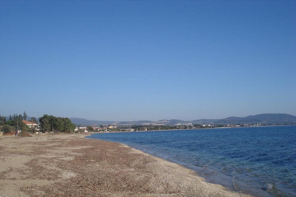 Земля Халкидики-Ситония, Греция, 800 сот. - фото 1