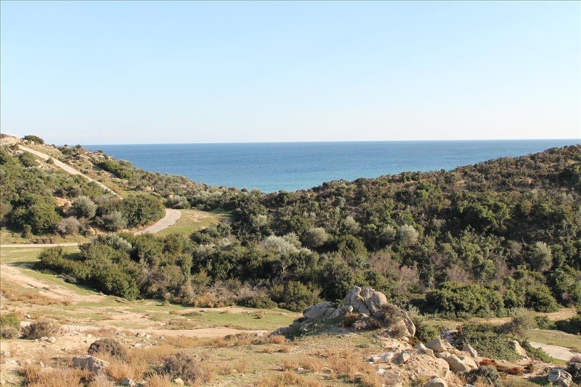 Земля Халкидики-Ситония, Греция, 500 сот. - фото 1