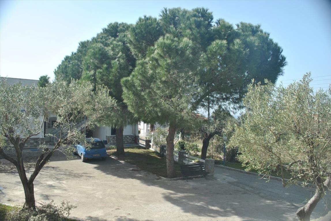 Квартира Халкидики-Ситония, Греция, 70 м2 - фото 1