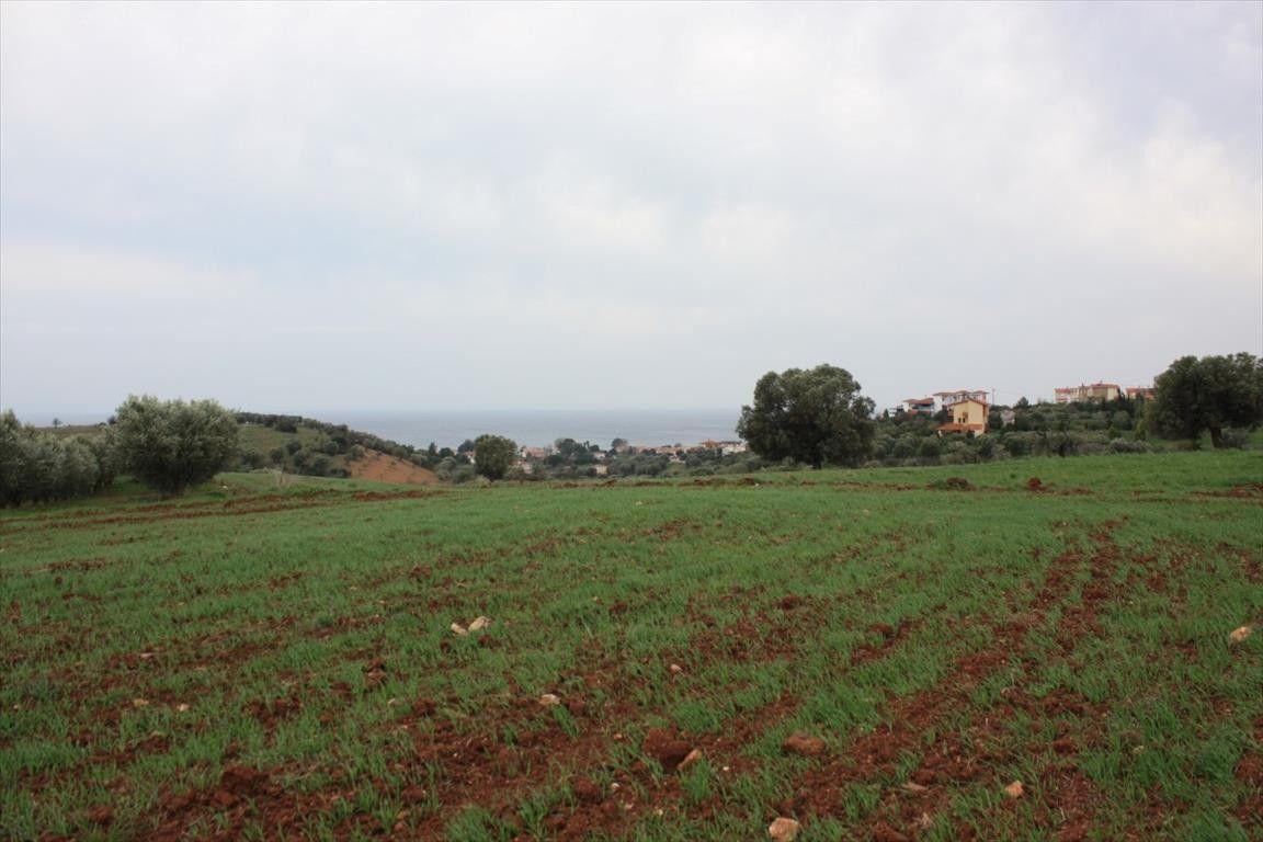 Земля Халкидики-Ситония, Греция, 3430 сот. - фото 1