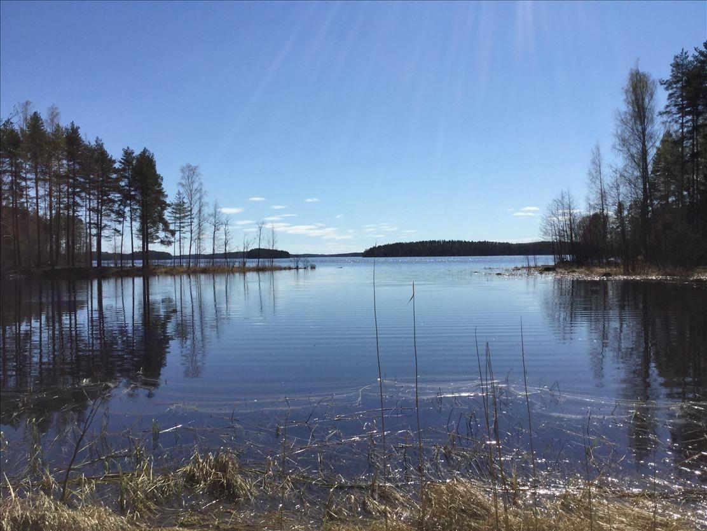 Земля в Савонранта, Финляндия, 4350 м2 - фото 1