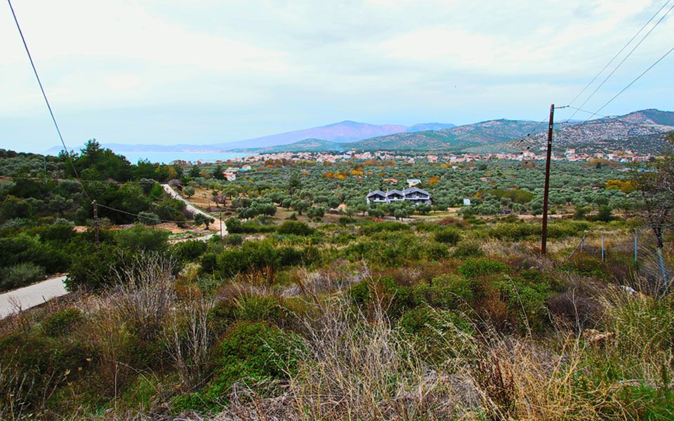 Земля на Тасосе, Греция, 5350 м2 - фото 1