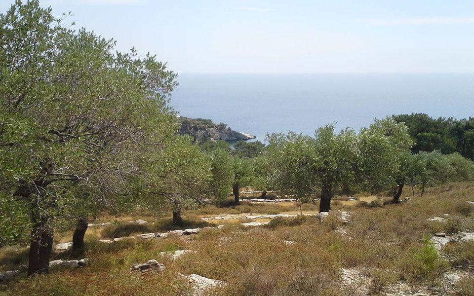 Земля на Тасосе, Греция, 5034 м2 - фото 1