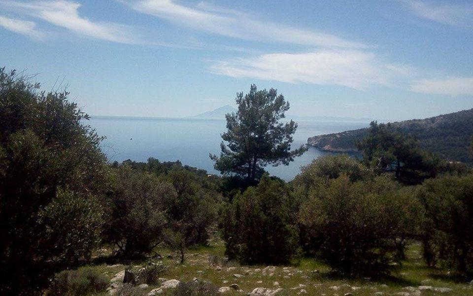 Земля на Тасосе, Греция, 7194 м2 - фото 1