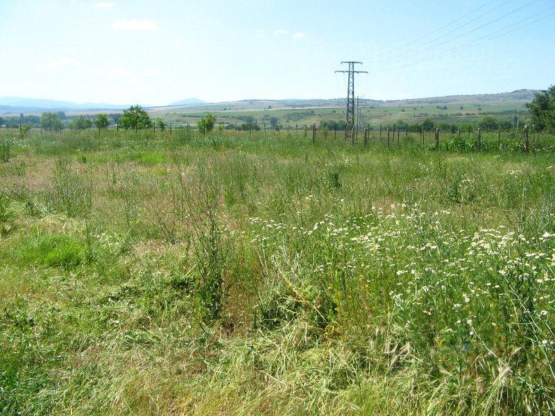 Земля в Кюстендиле, Болгария - фото 1